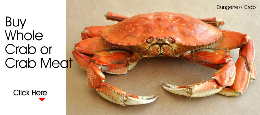 Buy a Whole Dungeness Crab or Crab Meat