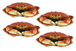 FOUR Whole Dungeness Crabs