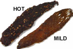 Mild or Hot Beef Jerky
